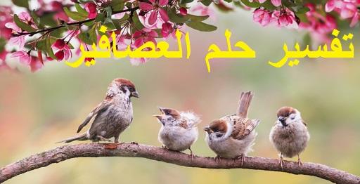 تفسير حلم العصافير ودلالته في المنام