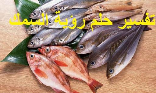 تفسير حلم رؤية السمك ودلالتها في المنام
