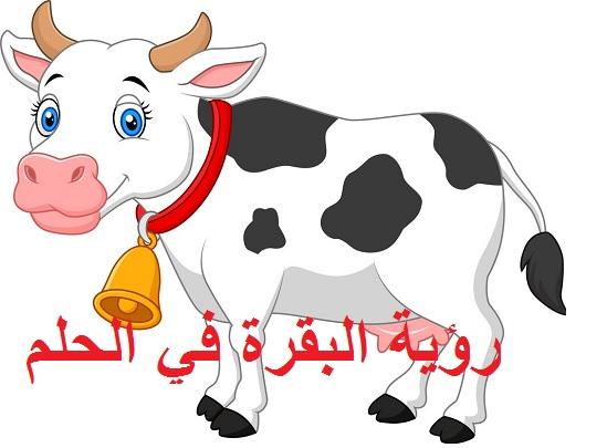 تفسير رؤية البقرة في الحلم ودلالتها للعزباء للمطلقة للمتزوجة للحامل للرجل